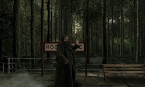 Stilecht soll Harry-Potter-Charakter 'Hagrid' den Besucher am Bahnhof verabschieden