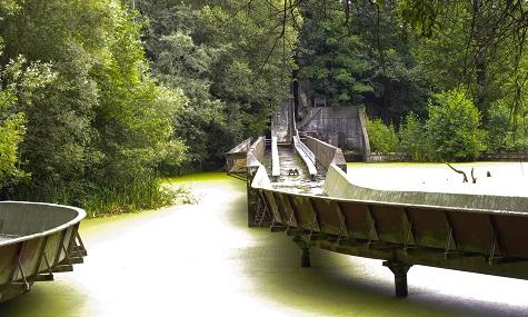 Die ehemalige Wasserbahn im Spreepark. Die alten Fahrgeschäfte sollen bis Ende April vom Gelände verschwinden.