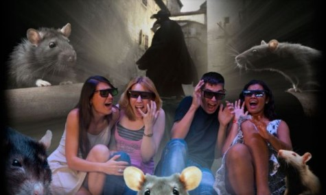 Das 5D-Kino wartet mit einigen Überraschungen auf