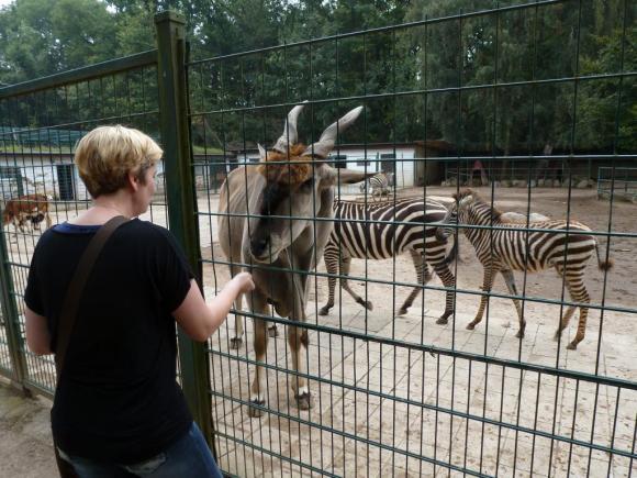Angehängte Bilder: Tierpark Gettorf 2014 028.JPG