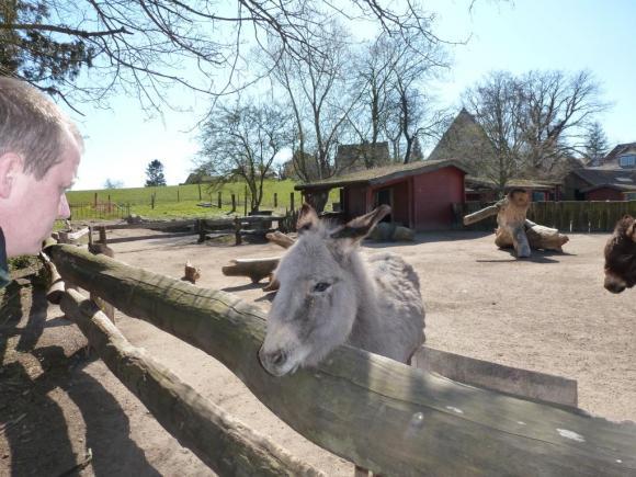 Angehängte Bilder: Grömitz 05.04.2012 006.JPG