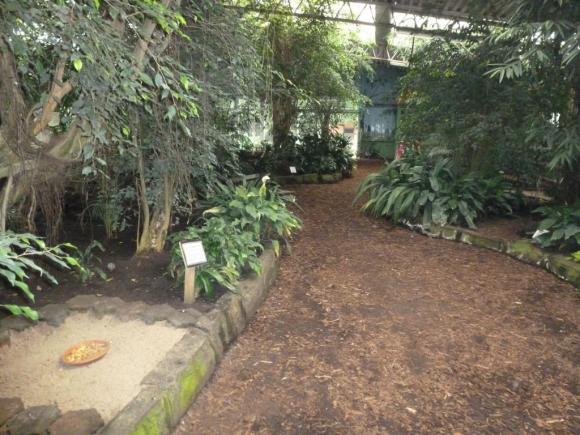 Angehängte Bilder: Tierpark Gettorf 2014 031.JPG